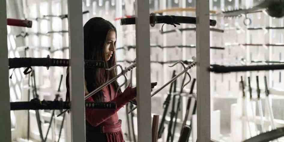 Elektra-in-the-Defenders